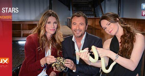 Bernard Montiel invite Lia Vinova sur le plateau d'ANIMAUX STARS en présence de Sophie Thalmann