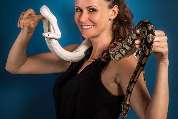 Snake & Drink en visio